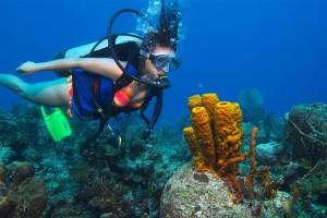 Diving on Sanur